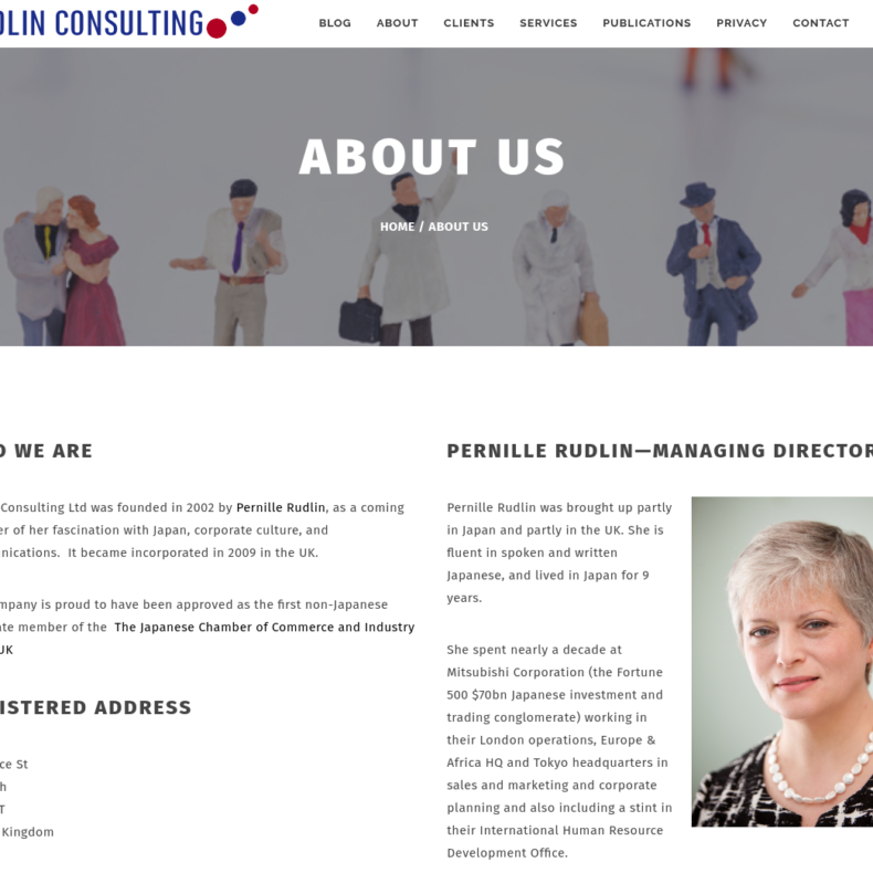 Rudlin Consulting